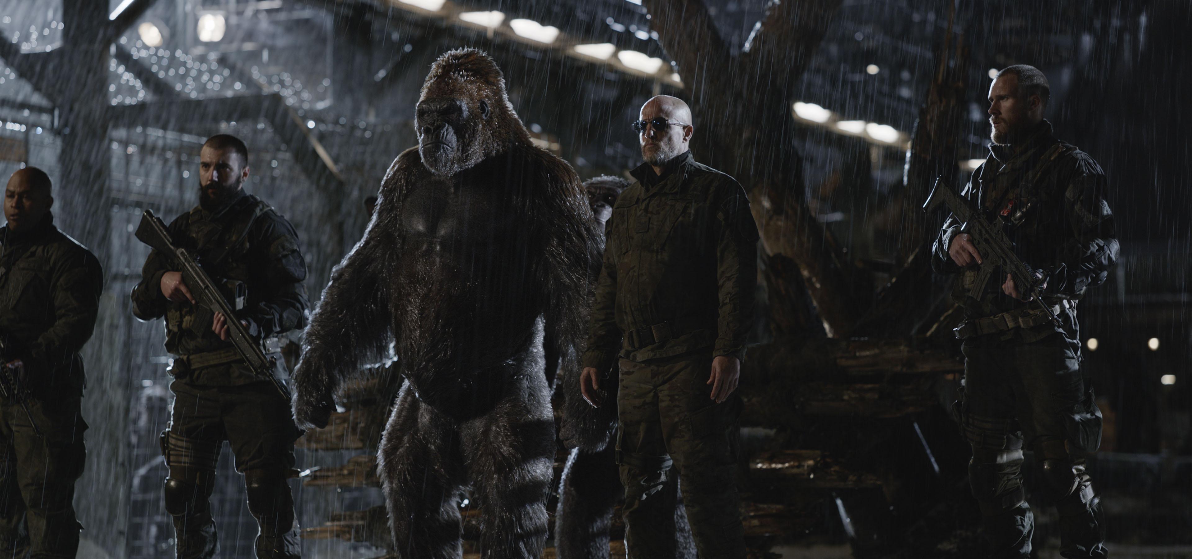 Cena do filme Planeta dos Macacos A Guerra, ou War for the Planet of the Apes, que mostra o Coronel, interpretado por Woody Harrelson, ao lado de um macaco que ajuda os humanos.
